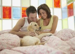 Незамужняя женщина думает, как удовлетворить мужчину в постели, замужняя — как удовлетворить мужа во всем.
